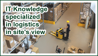 IT Knowledge specialized in logistics in site's view